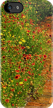 The Gardener iPhone Case by artisandelimage
