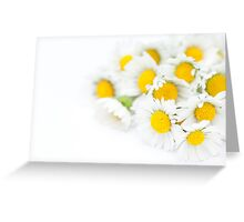 Bunch of Daisies Greeting Card
