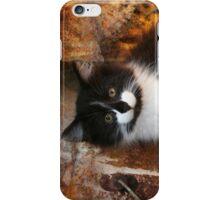 Rusty (iPhone case) iPhone Case/Skin
