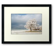 A Winter's Morning Framed Print