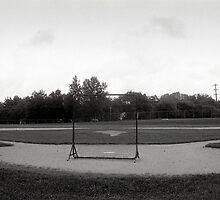Baseball Net by Robert Noll