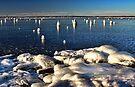 Shoreline Ice Incident by Carolyn  Fletcher