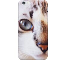 Cat #5 iPhone Case/Skin