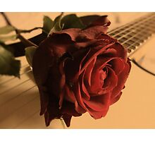 Strings To My Heart Photographic Print
