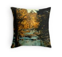 """framing by Mother Nature"" Throw Pillow"