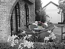 garden view BW by LisaBeth