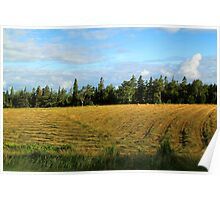 Prince Edward Island Hayfield Just Cut Poster