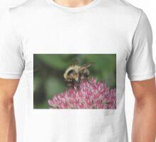 Bee Feeding on Sedum Unisex T-Shirt