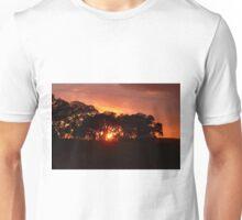 Gorgeous Skies above Unisex T-Shirt