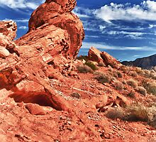 Desert Harmony by James Marvin Phelps