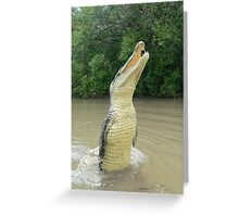 Leaping crocodile in the Adelaide River Greeting Card