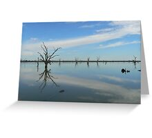 Murray River between Adelaide and Quorn Greeting Card