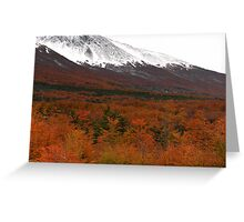 Mountains and forest outside Ushuaia Greeting Card
