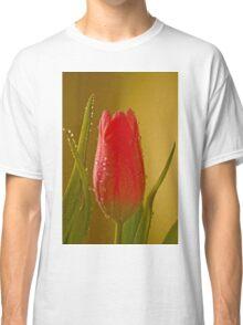 Tulip 1  Classic T-Shirt