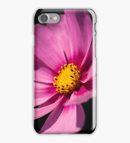 Cosmea iPhone Case iPhone Case/Skin