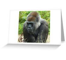 Lowland Gorilla Greeting Card