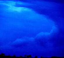 Blue Storm by Liz Worth