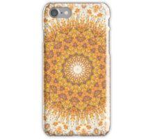 Autumn Gatherings iPhone Case/Skin