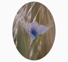 Blue Butterfly In field Baby Tee