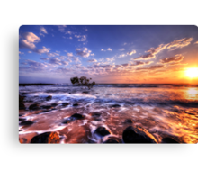 Seaside Awakenings Canvas Print
