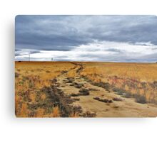 To Ever Ever Land? Metal Print