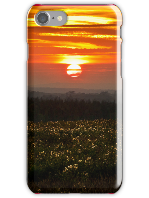 Sunset - iPhone Case by Leon Ritchie