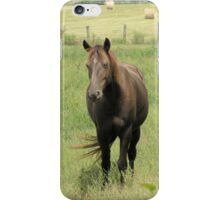 Horse iPhone Case iPhone Case/Skin