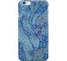 iPhone Case of painting..Amoeba iPhone Case/Skin