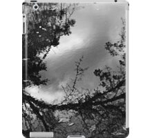 Fallen Leaves iPad Case/Skin