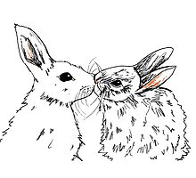 Kissing rabbits Photographic Print