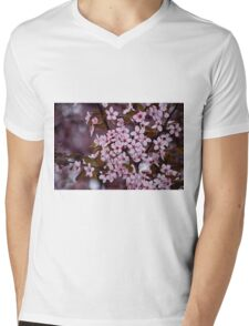 Spring 2009 (3) Mens V-Neck T-Shirt