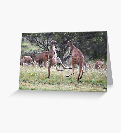 Kangaroos tail standing Greeting Card