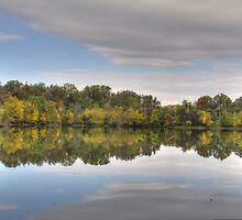 Waldon Pond Fall 2015 I  by Rich Fletcher