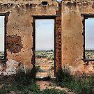 Desert Frame - Silverton NSW Australia by Bev Woodman
