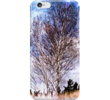 Birch on the dunes iPhone Case/Skin