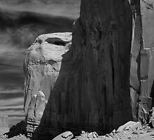 The Eagle's Head - Monument Valley by Denise McDonald