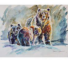 Ice Bears Photographic Print