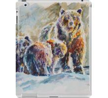 Ice Bears iPad Case/Skin