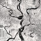 dream tree by Dorit Fuhg