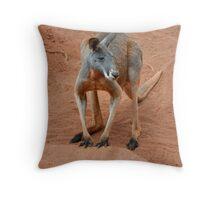 Red Kangaroo, Australia Throw Pillow