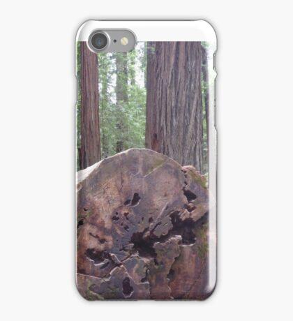 2015 Avenue of the Giants Big Log iPhone Case/Skin