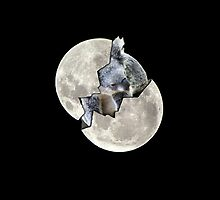 ~ The Koala in the Moon ~ (iPhone Case) by Donna Keevers Driver