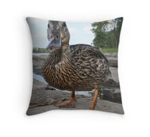 Webbed and Wondering Throw Pillow