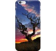 Lone Tree Sunset Case iPhone Case/Skin