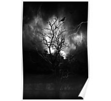 The Lightning Tree Poster