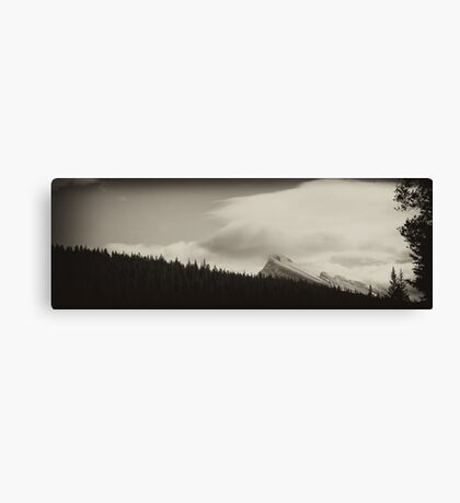 Banff Beauty: The Forests of Mt. Norquay Canvas Print