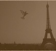 Eiffel tower and toy bird by fritsswanepoel