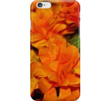Marigold - Calendula II iPhone Case/Skin