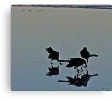 Folly Beach Birds Canvas Print