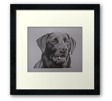 Lincs - Black lab Framed Print